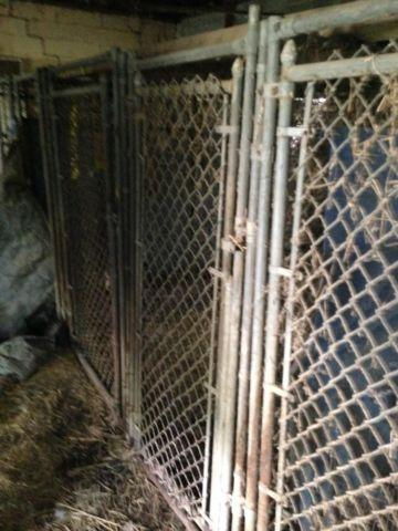 3-Sided Kennel Runs (8 Available)