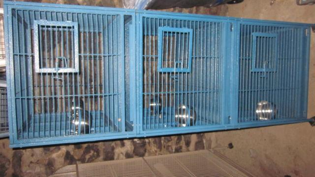 Triple Bird Cage (King Cage)
