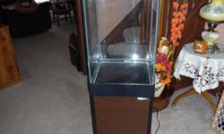 ALMOST NEW 10 GALLON UPRIGHT FISH TANK WITH CABINET, FILTER AND HEATER. PLEASE CONTACT ME AT EMAIL OR CALL 523-4221