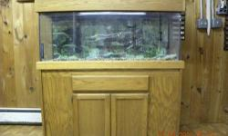 wrought iron fish tank stand that holds a 10 gallon tank and maybe bigger if you dont like it you can always scrap it lol
