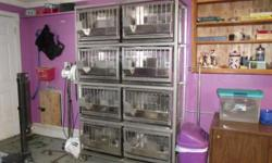 Hello, I have a set of 8 Stainless Steel rabbit cages for sale with rack, feeders, and water nipples and lines. Just connect to water line. I used these cages in my grooming shop. Can be used for show/pet rabbits also. Will Never rust!! See pics