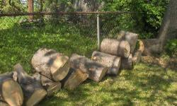I had to cut down a tree in my back yard last week. It is fresh and was cut into smaller pieces. It would be perfect for your firewood this fall or winter but has to be cut, split and carved into smaller pieces to go in your fireplace. Also can be used